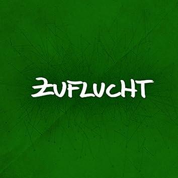 Zuflucht (feat. Uwe Kaa, Mirta J. Wambrug) [Welcome Refugees]