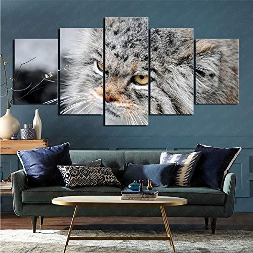 mmkow 5 Piezas de Animal Gato de Pallas Pintura sobre Lienzo Lienzo decoración Moderna para el hogar 100x200cm (Marco)