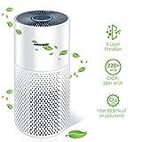 Shinmax purificador de aire con filtro hepa h13 súper grande de 5 etapas, filtro de aire con modo de suspensión 40m² 30 db limpiador de aire silencioso usb para fumadores bacterias caspa de mascotas