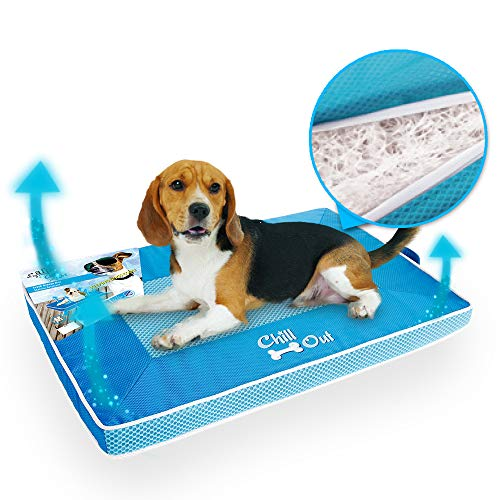 6 Best Dog Cooling Pads In 2020 Treehousepuppies