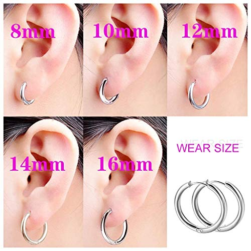 Best Deals! 5 Pairs Stainless Steel Hoop Earrings Set - NEWHE 8mm 10mm 12mm 14mm 16mm Cartilage Earr...