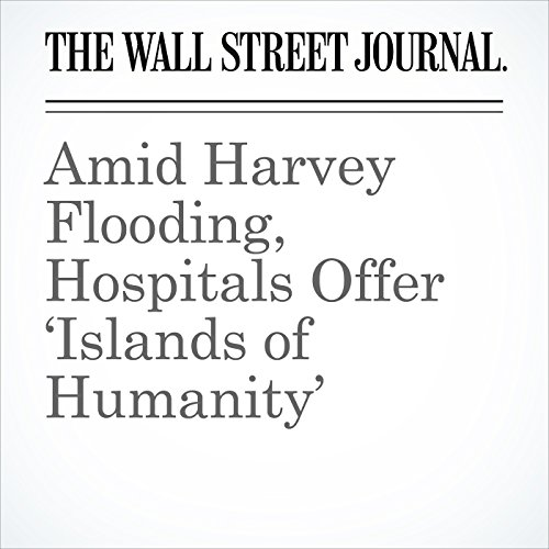 Amid Harvey Flooding, Hospitals Offer 'Islands of Humanity' audiobook cover art