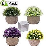 QAQGEAR 4 Paquetes de plástico Artificial Mini arbustos topiarios en macetas Plantas Falsas Vegetación de imitación en macetas Pequeñas Plantas de Interior 4.7'de Altura para vegetación