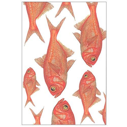 cicada 和紙はがき ばら売り 海シリーズ 魚 ポストカード 金目鯛 タツノオトシゴ 熱帯魚 伊豆 marineE