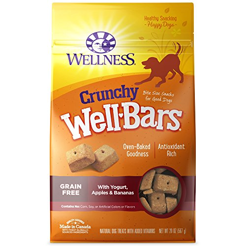 Wellness WellBars Crunchy Dog Treats, Grain Free Biscuits with Yogurt, Apples & Bananas, 20 Ounce Bag