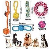 Zoom IMG-1 docatgo gioco cane corda resistenti