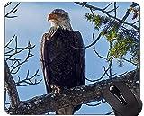 Yanteng Alfombrilla de Goma Antideslizante para Juegos, Alfombrilla de ratón de Goma Hawk Eagle Bird Mountain