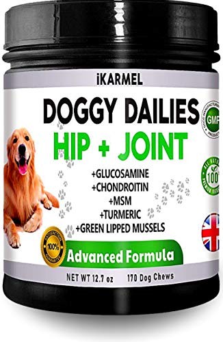 Dog Joint Care Supplements | Joint Aid For Dogs | 170 Advanced Hip & Joint Chews | Dog Pain Relief Anti Inflammatory | glucosamine for dogs