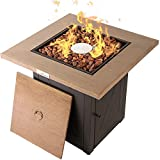 LEGACY HEATING 28 Inch Outdoor Gas Propane Fire Pit Table