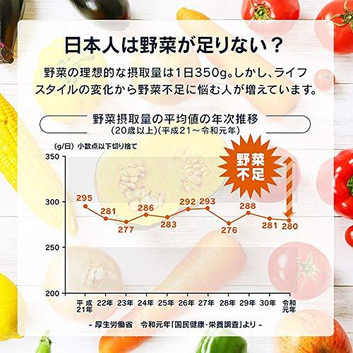 アイリスオーヤマ たっぷり野菜のごろっとカレー 野菜1/2日分