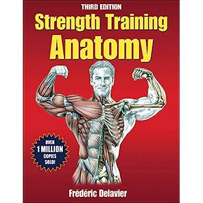 strength and anatomy