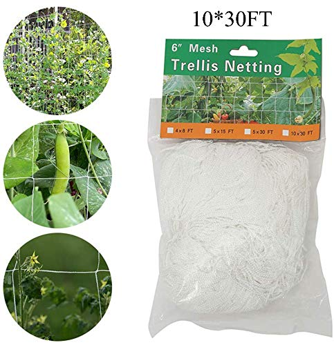 Plant Climbing Net, Garden Netting, Plant Crawling Net, Trellis Netting Support, Plant Trellis Plant Net Trelli, for Climbing Plants,Vegetables, Fruits, Flowers