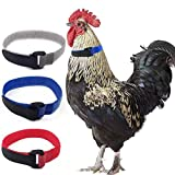 koeall 3 Pack Anti Crow Rooster Collar No Crow Neck Belt for Roosters Cockerel Velcro Nylon,Prevent Chickens from Screaming, Disturbing Neighbors