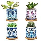 LINGSFIRE 7.5CM Macetas para Cactus de Cemento con...