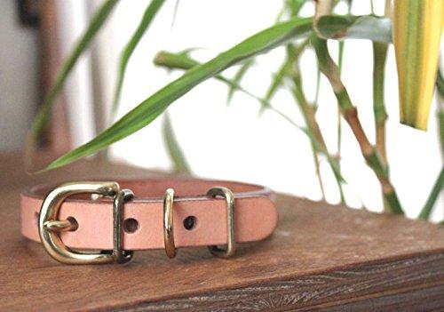 サクラ犬具製作所『おなまえ首輪真鍮彫刻プレート付Lサイズ』