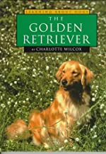 The Golden Retriever (Learning about Dogs)