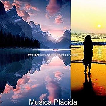 Musica Plácida