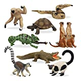 TOYMANY 11PCS Madagascar Safari Animals Figurines Toy with Meerkat Lemur Chameleon Crocodile-Jungle Forest Zoo Animal Figures Set, Christmas Birthday Gift Party Favor School Project for Kids Toddlers