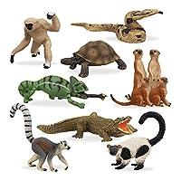 TOYMANY 11PCSマダガスカル 動物フィギュア 野生動物フィギュアセット リアルな動物模型 動物玩具モデル  ABSプラスチック製 誕生日 プレゼント 6歳以上