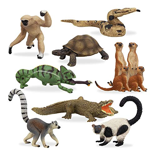 TOYMANY 11PCS Madagascar Jungle Animals Figurines Toy with Meerkat Lemur Chameleon Crocodile-Jungle Forest Zoo Animal Figures Set  Christmas Birthday Gift Party Favor School Project for Kids Toddlers