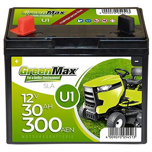 GreenMax U1 Garden Power Rasentraktor-Batterie 12V 30Ah 300A Starterbatterie für Aufsitzmäher wartungsfrei