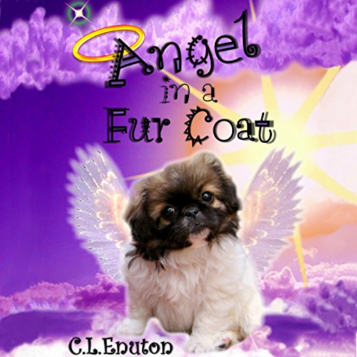 Angel in a Fur Coat audiobook cover art