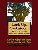 A Walking Tour of Saskatoon, Saskatchewan (Look Up, Canada!)