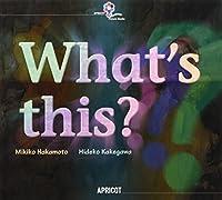 キッズ英語絵本シリーズ ビッグブック Vol.10 What's this ?