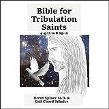 Bible for Tribulation Saints: 4-4-12 to 8-29-12