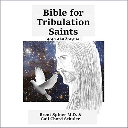 Bible for Tribulation Saints: 4-4-12 to 8-29-12 audiobook cover art