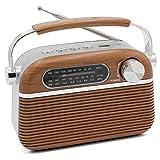 FISHTEC ® Radio Vintage Design Rétro USB / MP3 / Lecteur Micro SD - Portable - Antenne Rétractable - Fonctionne sur Pile et Secteur - 20 CM x 12 CM - Motif Bois et INOX