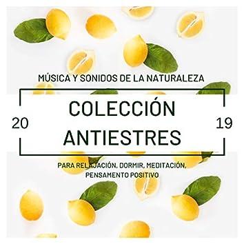 Colección Antiestres 2019: Música y Sonidos de la Naturaleza para Relajación, Dormir, Meditación, Pensamento Positivo