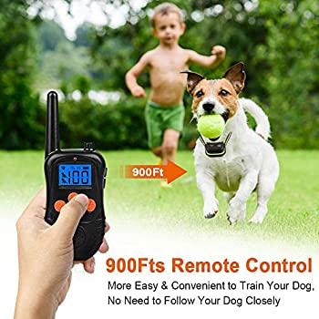 Wodondog Collier de Dressage pour Chien, Collier Électrique pour Chien Rechargeable et Étanche 300 Mètres avec Mode de Vibration Sonore
