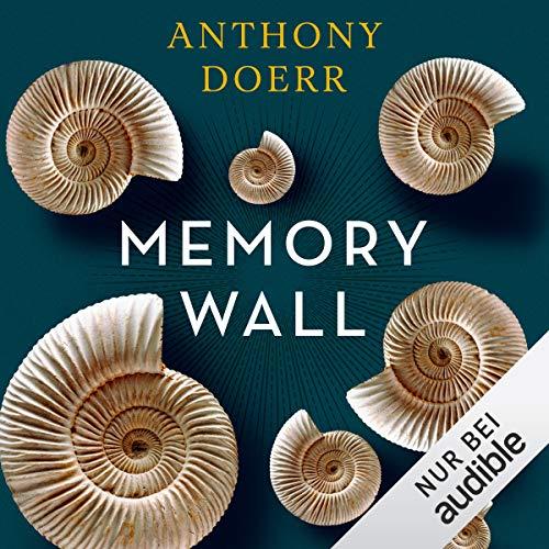 Memory Wall audiobook cover art