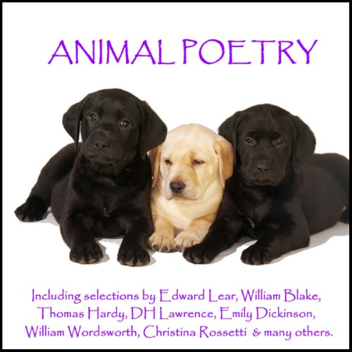 Animal Poetry audiobook cover art