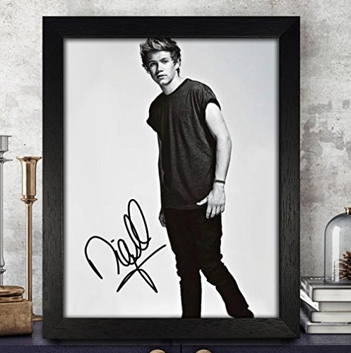 one direction posters niall - 8