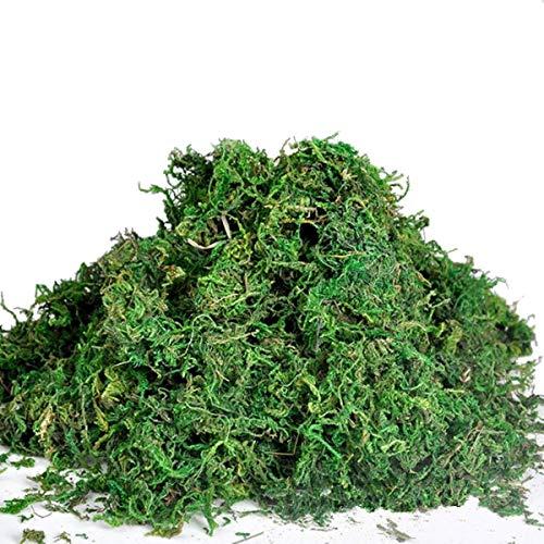 Kingso Musgo artificial, ideal para decorar plantas, flores o guirnaldas., 50 g