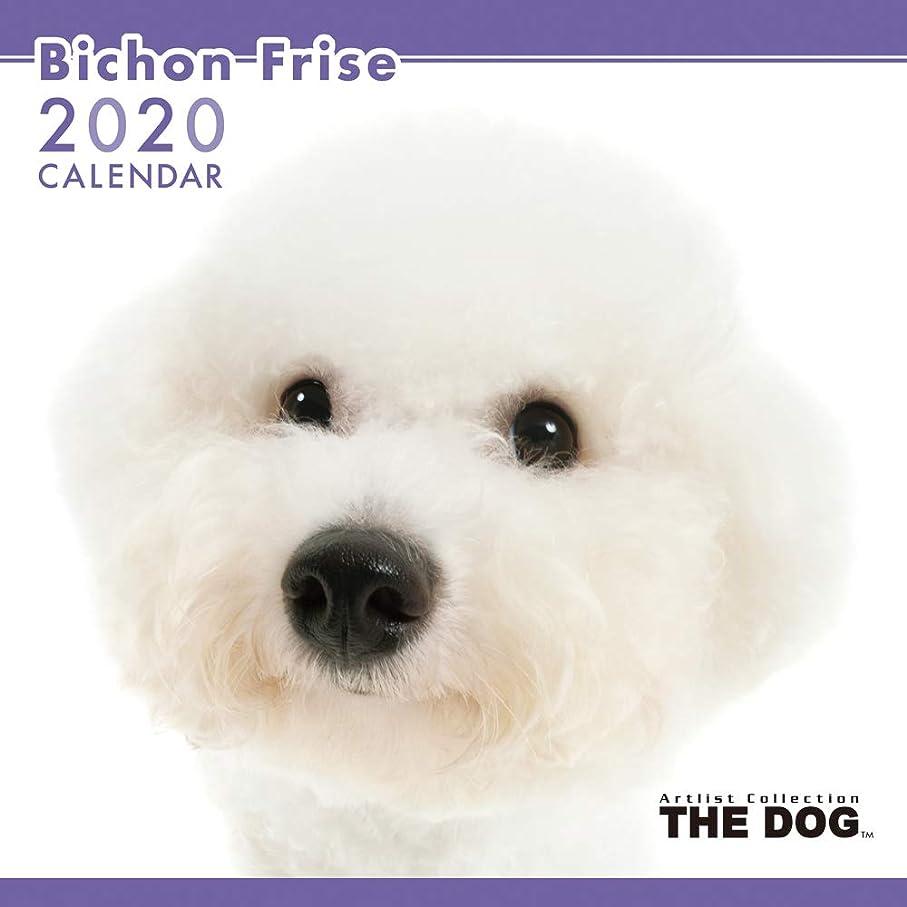 のどかろうじて実証するTHE DOG カレンダー ビションフリーゼ 2020年カレンダー CL-1106
