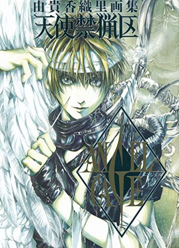 Artbook angel cage