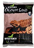 Rettili Planet Lettiera Sabbia di Calcio terrario Sand Kalahari Rosso 2,5kg