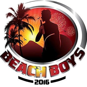 Beach Boys 2016