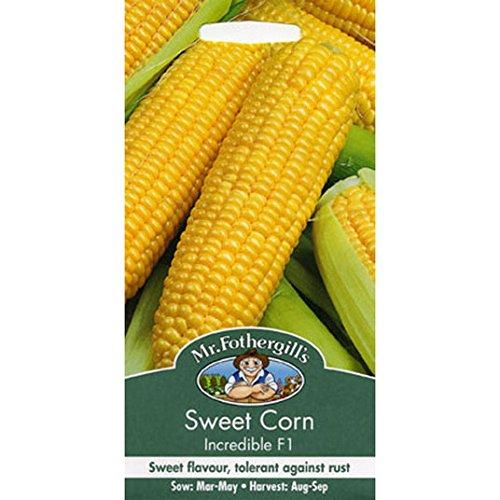 Graines de M. Fothergill - maïs sucré Incredible F1