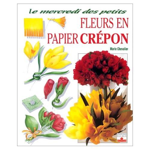 Fleurs Papier Amazon Fr