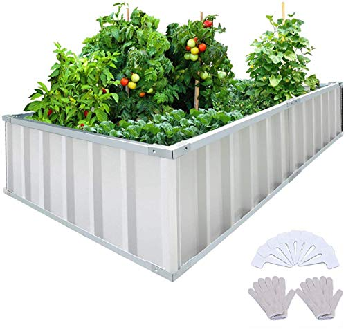 KING BIRD Extra-Thick 2-Ply Reinforced Card Frame Raised Garden Bed Galvanized Steel Metal Planter Kit Box Green 68'x 36'x 12' with 8pcs T-Types Tag & 2 Pairs of Gloves (Ivory)