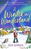 A Winter in Wonderland: Escape to Lapland this Christmas and cosy up with a heart-warming festive romance!