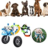 Dog Wheelchairs Review and Comparison