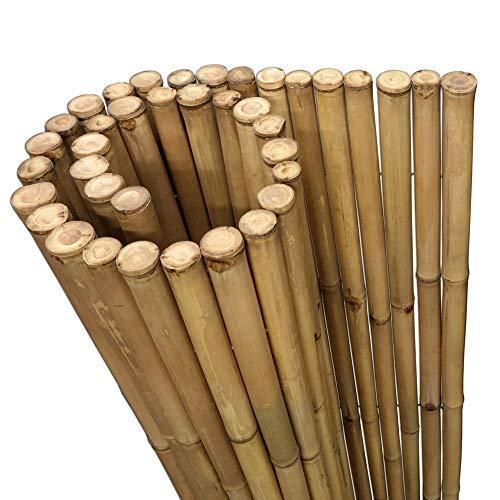DE-COmmerce Extrem Stabiler Bambus Holz Sichtschutz Zaun XL hochwertiger Windschutz mit geschlossenen und versiegelten Bambusrohren (HxB) 200 cm x 180 cm Nature