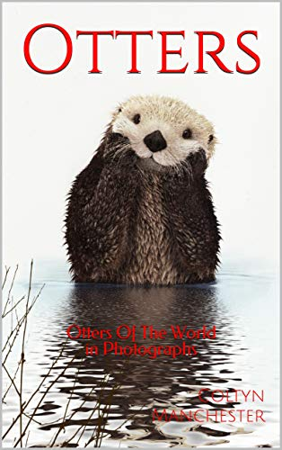 Otters: Otters Of The World in Photographs (English Edition)