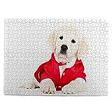 huagu Puzzle 500 Piezas-Rompecabezas Adultos-Adorable Cachorro Golden Retriever Disfraz de Santa-Juegos Educativos-Entretenimiento,Niños y Adolescentes,Divertido Regalo