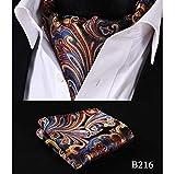 ZorYer Pajaritas Pañuelo de Bolsillo de Fiesta Boda Paisley a Cuadros Polka Dot Hombres Pañuelo de Seda Corbata Ascot Tie Pañuelo Set S393-C